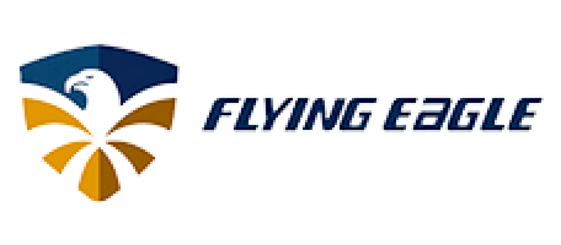 Logo Flying Eagle